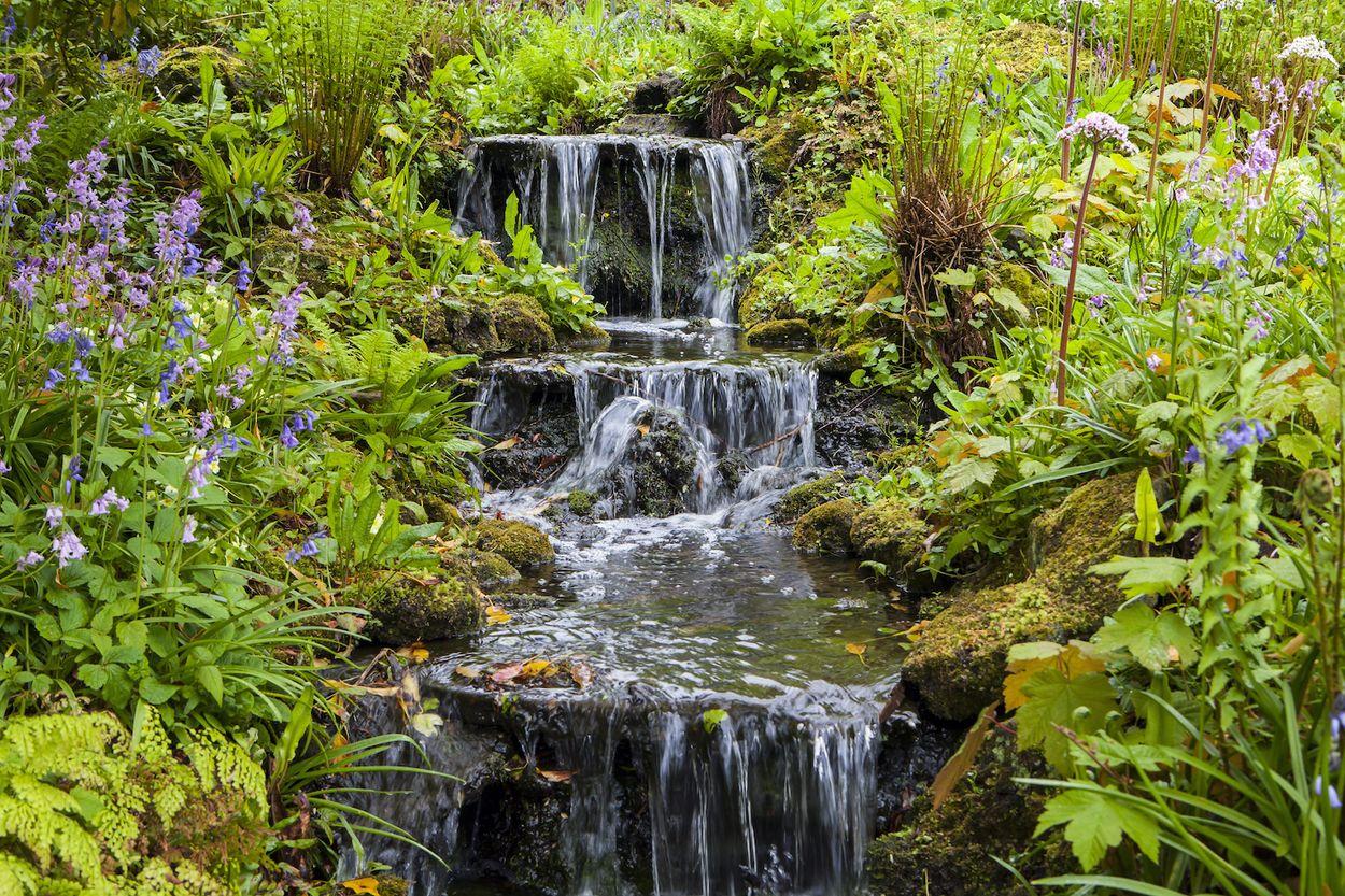 botanische tuin leiden