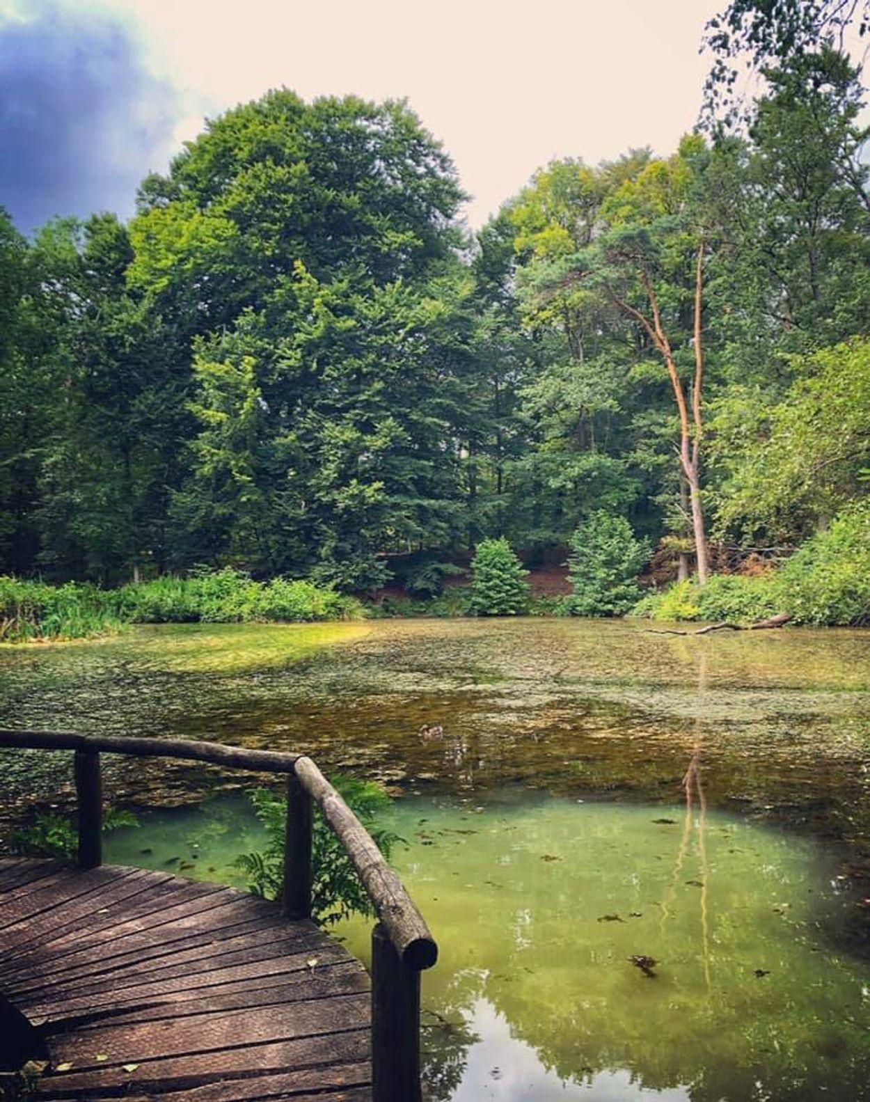 Silke Essens - Springendal Twente