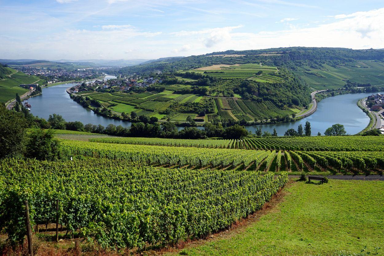 Afbeelding van Dit land wordt Klein Zwitserland genoemd, maar ligt dichterbij huis