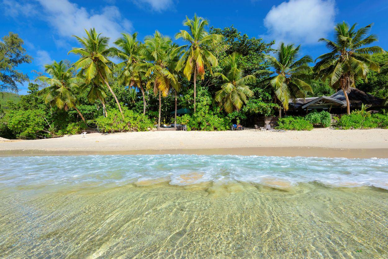Afbeelding van Ontsnap naar Jamaica met deze tropische Instagram Live-serie