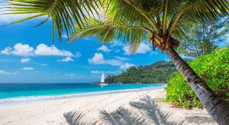 Afbeelding van Jamaica