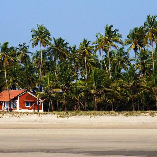 Afbeelding van Goa