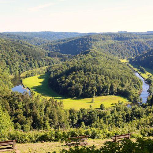 Afbeelding van Ardennen