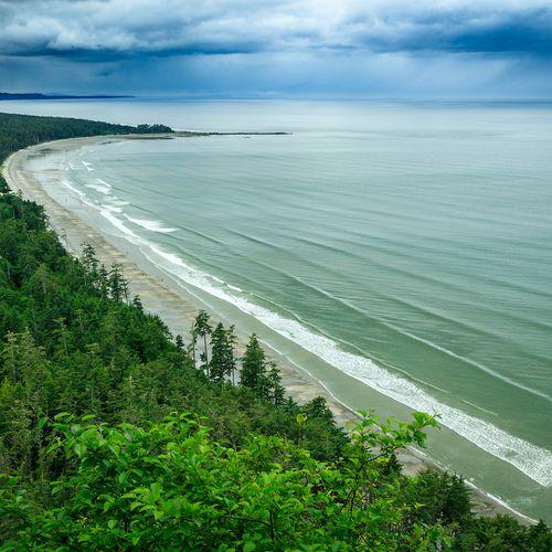 Afbeelding van Regenwoud, adelaars en totempalen: het isolement van de Canadese Haida Gwaii-archipel
