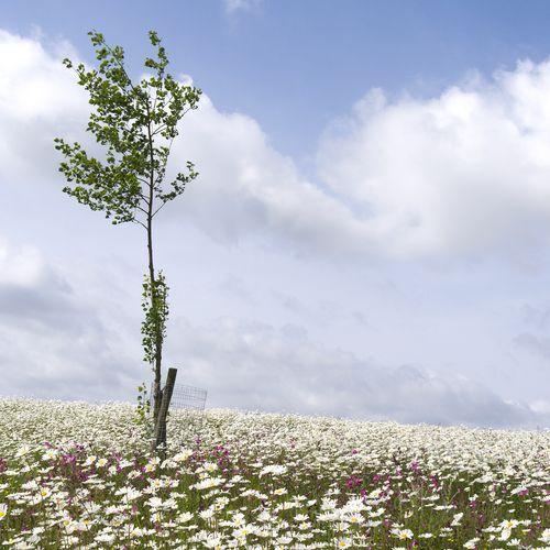 Afbeelding van Weekend in Zuid-Holland: dit zijn jullie favoriete plekken